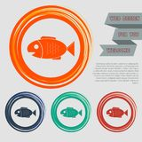 Fish icon on the red, blue, green, orange buttons for your website and design with space text. Illustration Royalty Free Stock Image