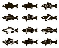 Fish icon set. Collection of black fish icon isolated Stock Photos