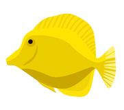 Fish icon. Vector flat illustration. Ocean or sea fish Royalty Free Stock Image