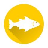 Fish icon. On white background Stock Photo
