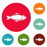 Fish icons circle set vector. Isolated on white background Stock Photography
