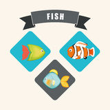 Fish icons design Stock Image