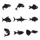 Fish icons. Fish set: black, simple icons on white background Royalty Free Stock Photo