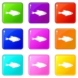 Fish icons 9 set. Fish icons of 9 color set isolated vector illustration Stock Photography