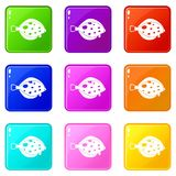 Fish icons 9 set. Fish icons of 9 color set isolated vector illustration Stock Photo