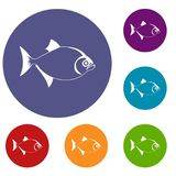 Fish icons set. In flat circle reb, blue and green color for web Royalty Free Stock Images