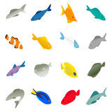 Fish icons set, isometric 3d style. Fish icons set in isometric 3d style on a white background Stock Photos