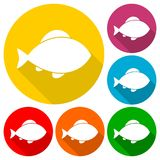 Fish icons set with long shadow. Vector icon Stock Image