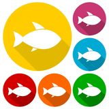 Fish icons set with long shadow. Vector icon Stock Photo