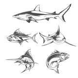 Fish icons Stock Images