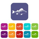 Fish icons set. Vector illustration in flat style In colors red, blue, green and other Royalty Free Stock Photos