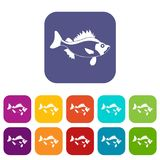 Fish icons set. Vector illustration in flat style In colors red, blue, green and other Stock Images