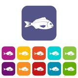 Fish icons set. Vector illustration in flat style In colors red, blue, green and other Royalty Free Stock Images