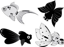 Fish illustration Stock Photo