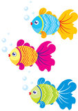 Fish illustration. Vector illustration bright colourful small fishes, an illustration for children Royalty Free Stock Photo