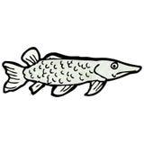 Fish illustration Stock Photography