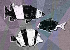 Fish illustration. Creative design of fish illustration Royalty Free Stock Photography