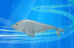 A fish. Illustration of under water fish Stock Photos