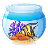 A fish inside the jar. Illustration of a fish inside the jar on a white background Royalty Free Stock Photo