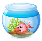 A fish inside the transparent aquarium. Illustration of a fish inside the transparent aquarium on a white background Stock Images