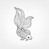 Fish isolated. Hand drawn doodle line decorative marine life bac. Fish isolated on white background. Doodle Line Art  pattern of underwater marine life in retro Royalty Free Stock Photos