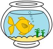 A fish in its aquarium. Illustration Stock Photo