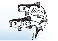 Fish jump. 2 abstract fish jumping out of water Stock Photography