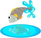Fish jumping Royalty Free Stock Photo