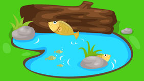 Fish jumping in the lake. Illustration of landscape fish jumping in the lake Stock Photo