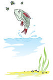 Fish jumping out of water. Fish eats insects jumping out of the water. Vector illustration Royalty Free Stock Photo