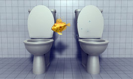 Fish jumping between toilets. A rendering of a golden fish appearing to jump between two open toilets or commodes Stock Image