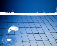 Fish jumping on a  volleyball net Stock Image