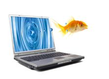 Fish jumps. The gold small fish jumps out of the monitor of a computer Royalty Free Stock Image