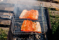 Fish kebabs from salmon grilling at nature. Sunny summer day Royalty Free Stock Photo