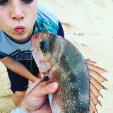 Fish Kiss. Freshly caught snapper fishing Royalty Free Stock Photo