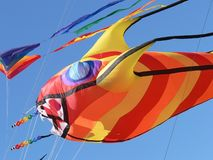 Fish Kite Stock Photo
