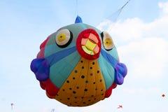 Fish kite Stock Photos