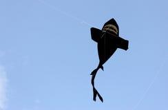 Fish kites Royalty Free Stock Image