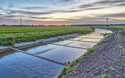 Fish ladder in Lowland river. Newly built Fish ladder in Lowland river on dutch agricultural countryside Royalty Free Stock Images