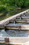 Fish ladder Royalty Free Stock Image
