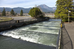 Fish ladders in Bonneville Oregon. Fish ladders and flowing fresh water Bonneville Oregon stock photography