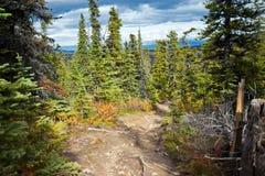 Fish Lake Trail Hike, Whitehorse, Yukon Fall Scenery Royalty Free Stock Photography
