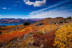 Fish Lake, Yukon Territory, Canada Royalty Free Stock Images