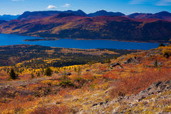 Fish Lake, Yukon Territory, Canada. Fall-colored boreal forest at shores of Fish Lake, Yukon Territory, Canada Stock Photography