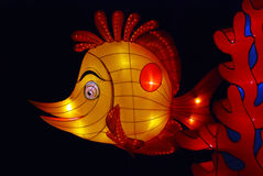 Fish lantern in the gardens Stock Image