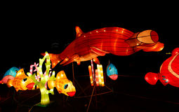 Fish Lantern Show Stock Photo