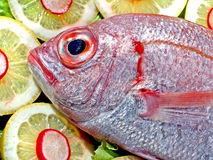 Fish with lemon. Presentation of a fish decorated with lemons Royalty Free Stock Photography