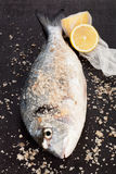 Fish, lemon and sea salt. Stock Photo