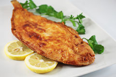 Fish lemon sole Stock Photo