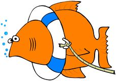 Fish With A Life Preserver. This illustration depicts a goldfish wearing a life preserver Stock Photography